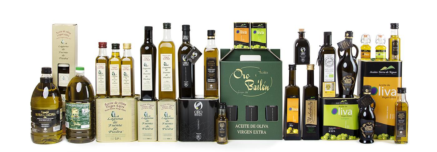 variedades aceite oliva 02