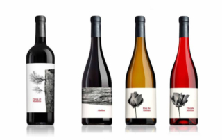 packaging-vino-TerradArt